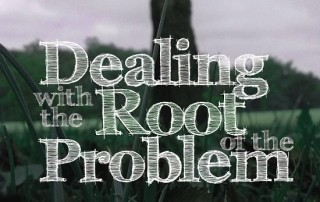 dealing_root_thumb