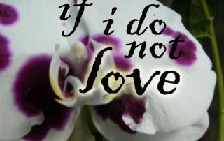 if i do not love_thumb